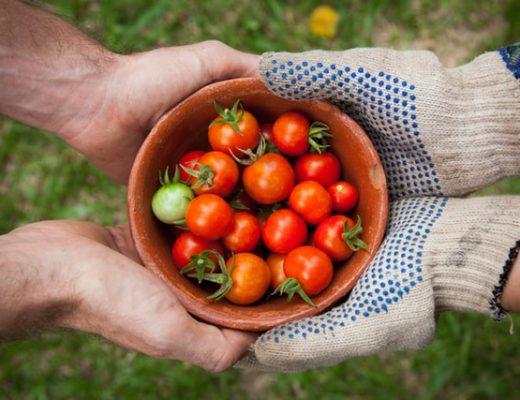 Good Community; Good Health - Art of Healthy Living